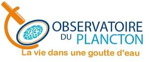Découverte du Plancton – Non-voyants/ malvoyants – 30/09/2020