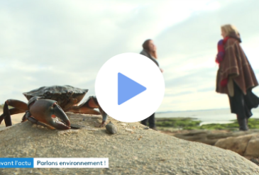 France 3 à la découverte des Aires Educatives Marines en Bretagne